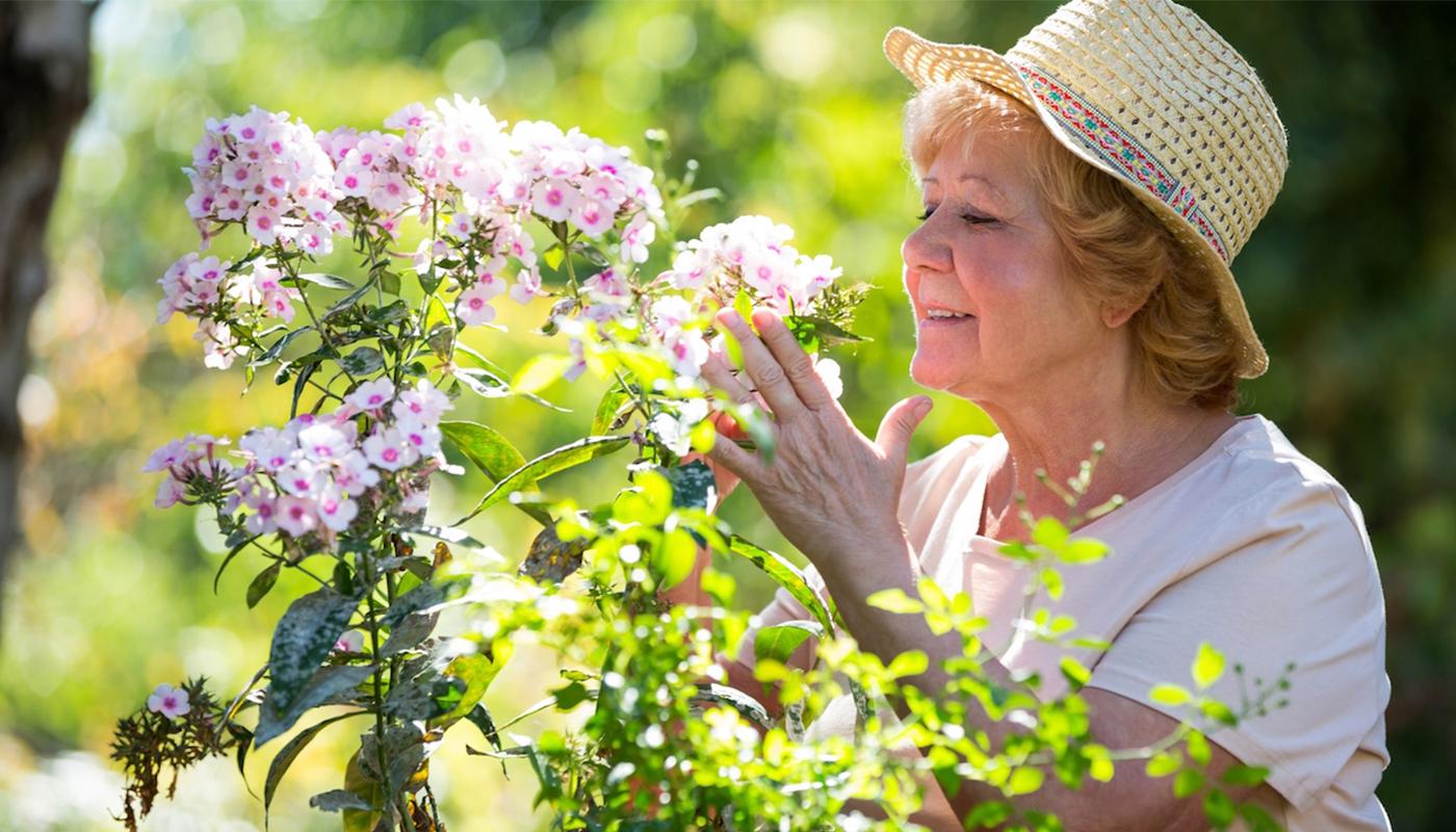Partir à la retraite : les meilleures activités pour rester occupé