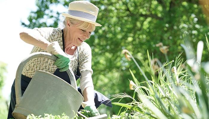 Les bienfaits du jardinage pour les personnes âgées